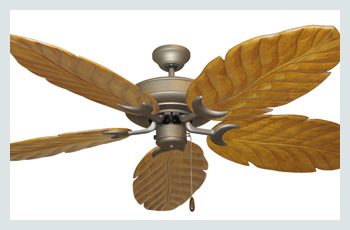 Raindance Arbor Ceiling Fan -  Featured Ceiling Fan