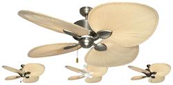 Palm Breeze II Tropical Ceiling Fan w/ 56